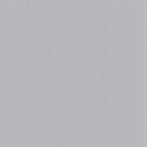 White Aluminium (RAL 9006)